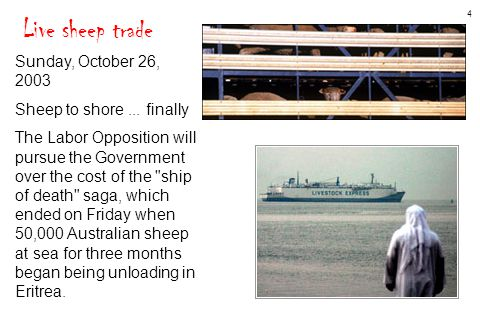 4 Live sheep trade Sunday, October 26, 2003 Sheep to shore... finally The Labor Opposition will pursue the Government over the cost of the