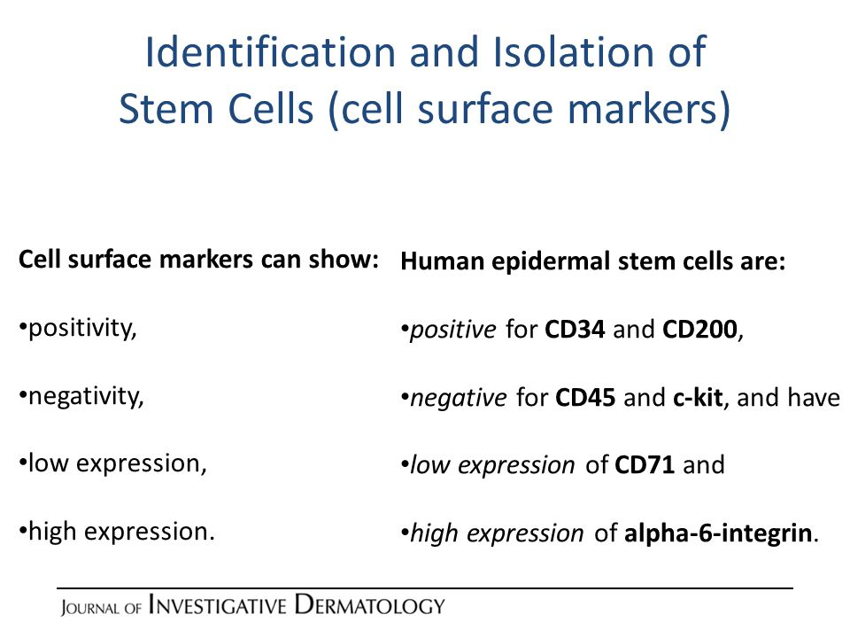 Identification and Isolation of Stem Cells (side population analysis) Side population (SP) analysis distinguishes stem and progenitor cells from other somatic cells based on their ability to remove foreign molecules (like Hoechst dyes) from the cells.