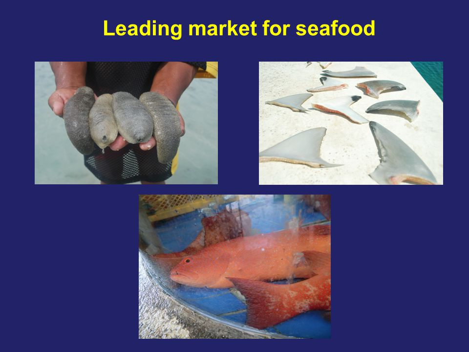 Summing up… Increased Chinese seafood consumption driver of stock declines Fisheries present potential benefits but currently not realised Ongoing policy activities by state, ENGO, market actors