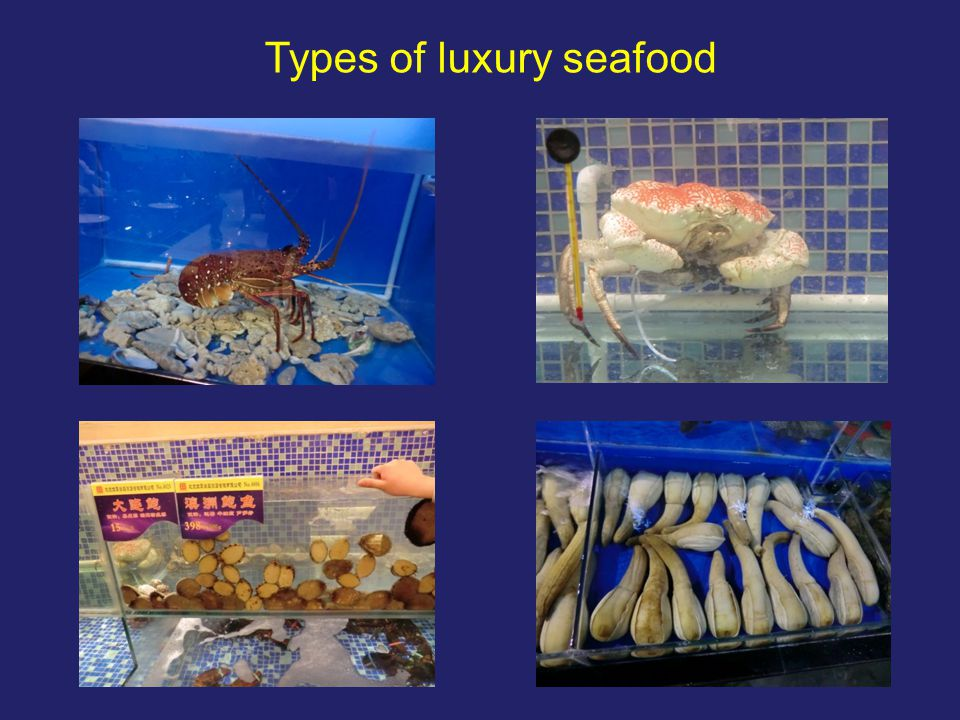 Community level problems and issues in LRFFT fishing communities (n = 431) 1.