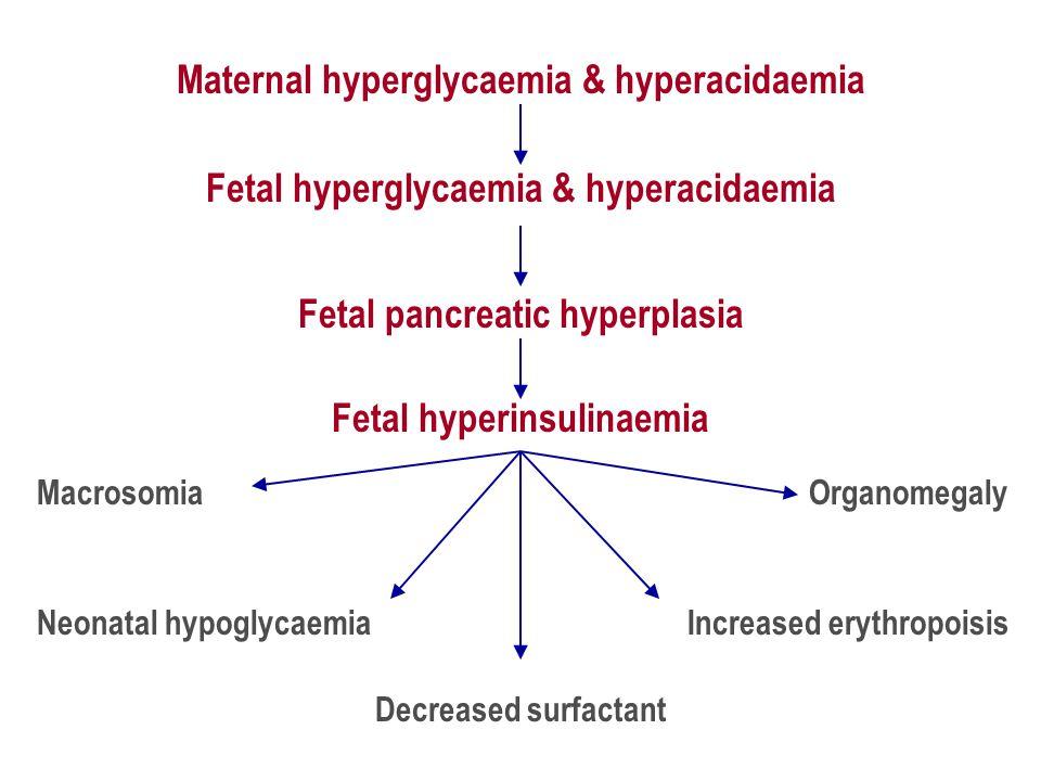 Maternal hyperglycaemia & hyperacidaemia Fetal pancreatic hyperplasia Fetal hyperinsulinaemia Macrosomia Decreased surfactant Organomegaly Neonatal hypoglycaemia Fetal hyperglycaemia & hyperacidaemia Increased erythropoisis