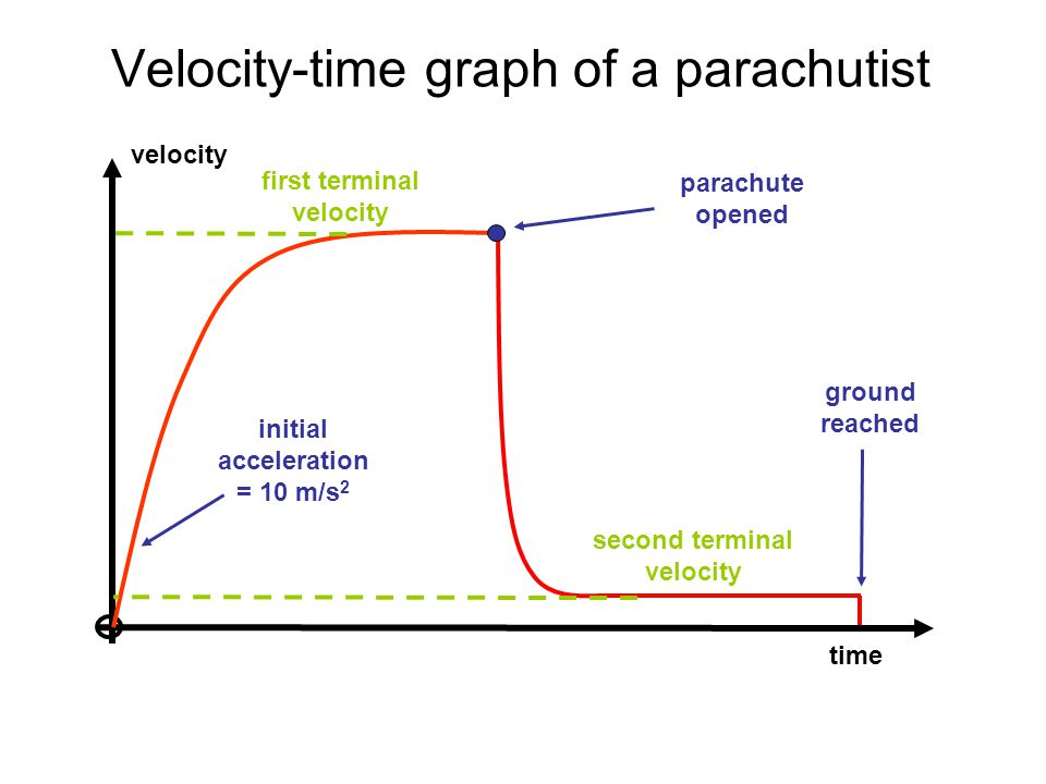 velocity time first terminal velocity initial acceleration = 10 m/s 2 Velocity-time graph of a parachutist second terminal velocity parachute opened g