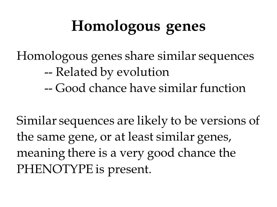 Use bioinformatics to predict cellular phenotypes.