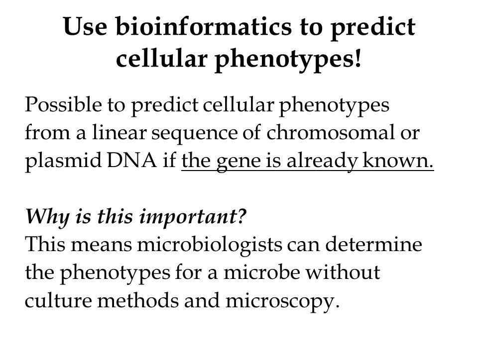 Why use bioinformatics instead of standard methods.
