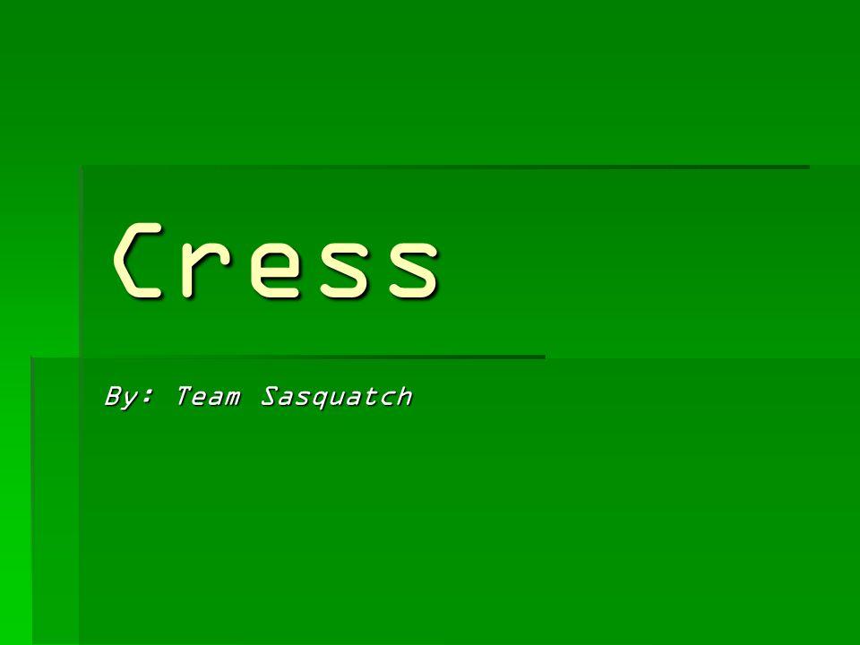 Cress By: Team Sasquatch