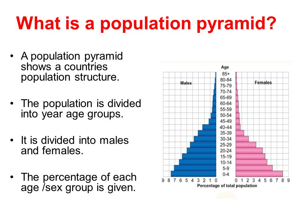 What is a population pyramid? A population pyramid shows a countries population structure. The population is divided into year age groups. It is divid