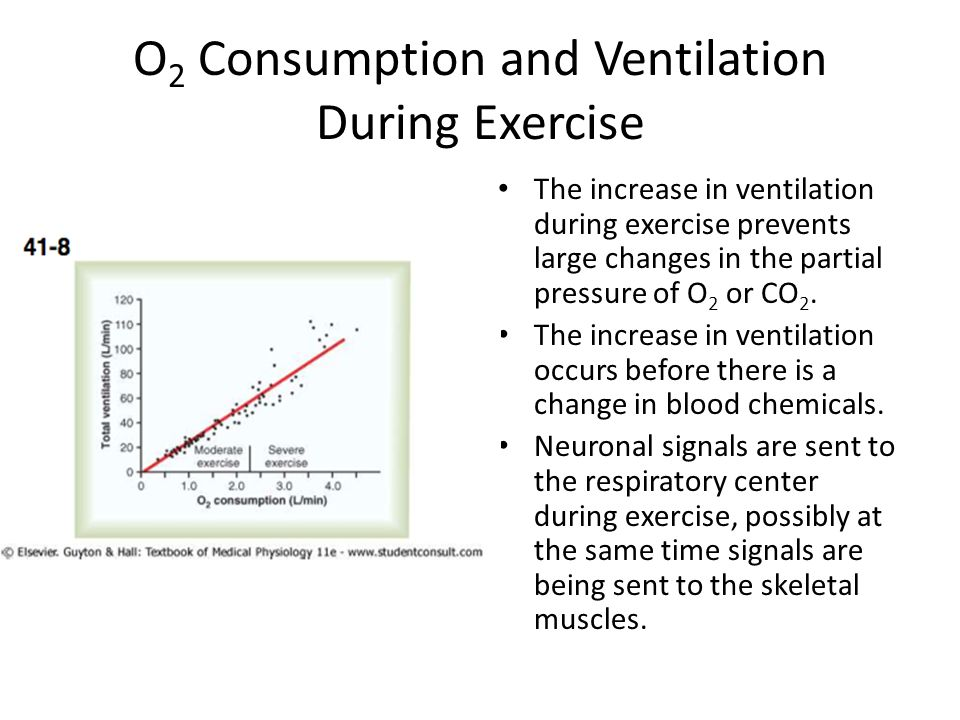 Alveolar Ventilation and Arterial P CO2 During Exercise The decrease P CO2 at the onset of exercise demonstrates that increasing blood CO 2 does not trigger the increase in ventilation during exercise.