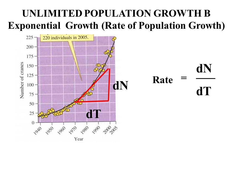 dN dT UNLIMITED POPULATION GROWTH B Exponential Growth (Rate of Population Growth) dN ___ dT = Rate