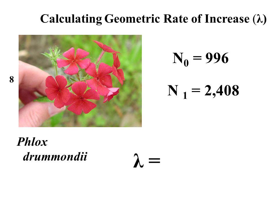 Phlox drummondii 8 N 0 = 996 N 1 = 2,408 λ = Calculating Geometric Rate of Increase (λ)