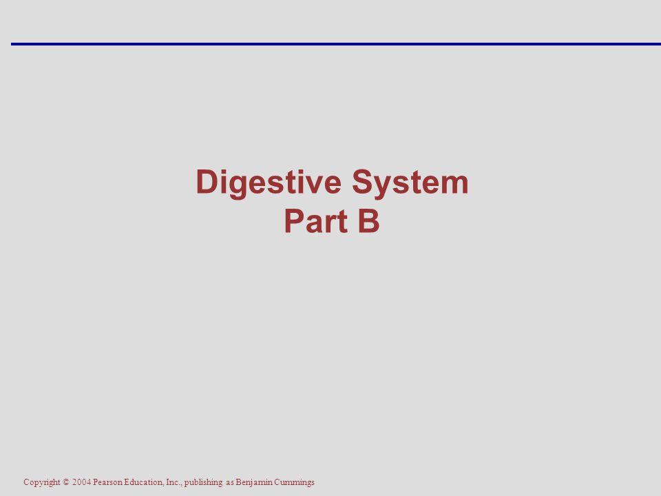 Copyright © 2004 Pearson Education, Inc., publishing as Benjamin Cummings Digestive System Part B