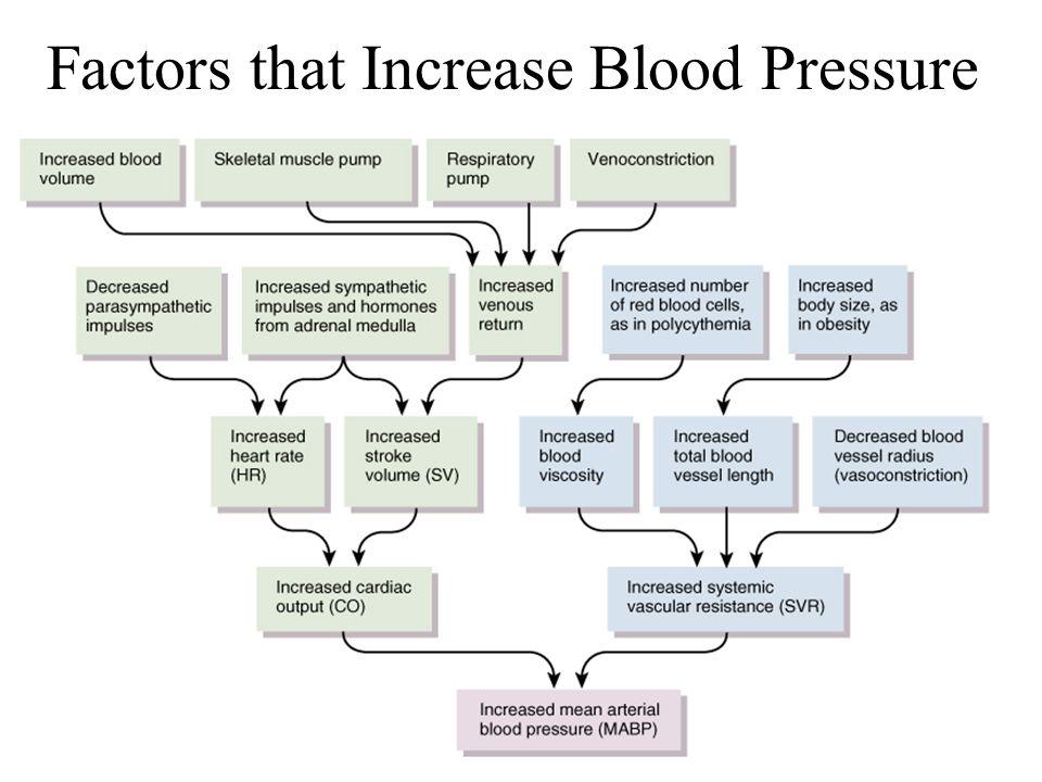 21-23 Factors that Increase Blood Pressure