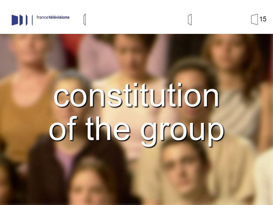 15 constitution of the group