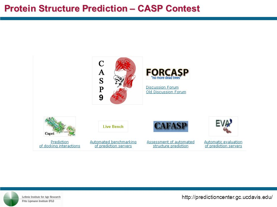 Protein Structure Prediction – CASP Contest http://predictioncenter.gc.ucdavis.edu/