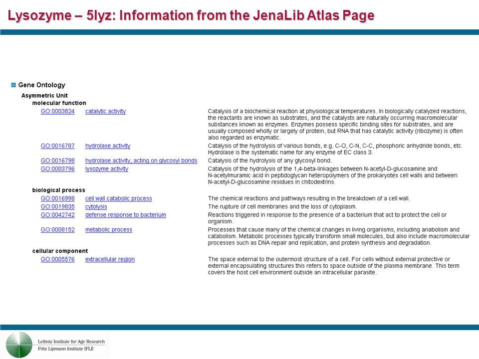 Lysozyme – 5lyz: Information from the JenaLib Atlas Page