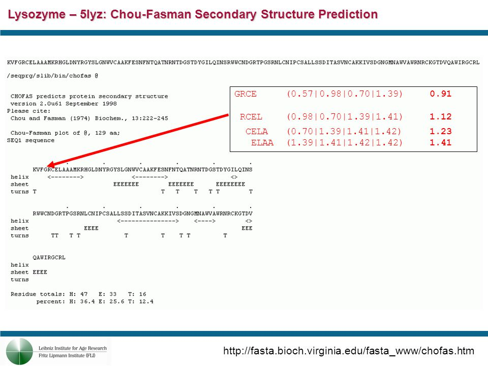 Lysozyme – 5lyz: PhD/PROF Structure Prediction http://cubic.bioc.columbia.edu/predictprotein/submit_def.html#top PROF_sec:PROF predicted secondary structure: H=helix, E=extended (sheet), blank=other (loop) PROF = PROF: Profile network prediction Heidelberg Rel_secreliability index for PROF_sec prediction (0=low to 9=high) SUB_secsubset of the PROFsec prediction, for all residues with an expected average accuracy > 82% (tables in header) NOTE: for this subset the following symbols are used: L: is loop (for which above is used).: means that no prediction is made for this residue, as the reliability is: Rel < 5 O3_accobserved relative solvent accessibility (acc) in 3 states: b = 0-9%, i = 9-36%, e = 36-100%.