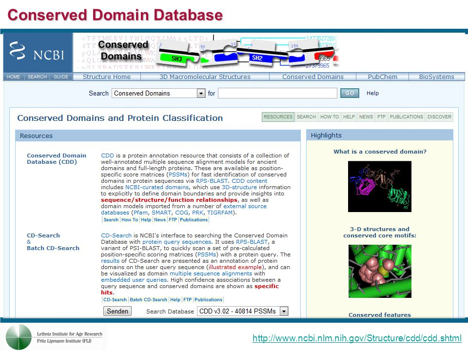 Conserved Domain Database http://www.ncbi.nlm.nih.gov/Structure/cdd/cdd.shtml