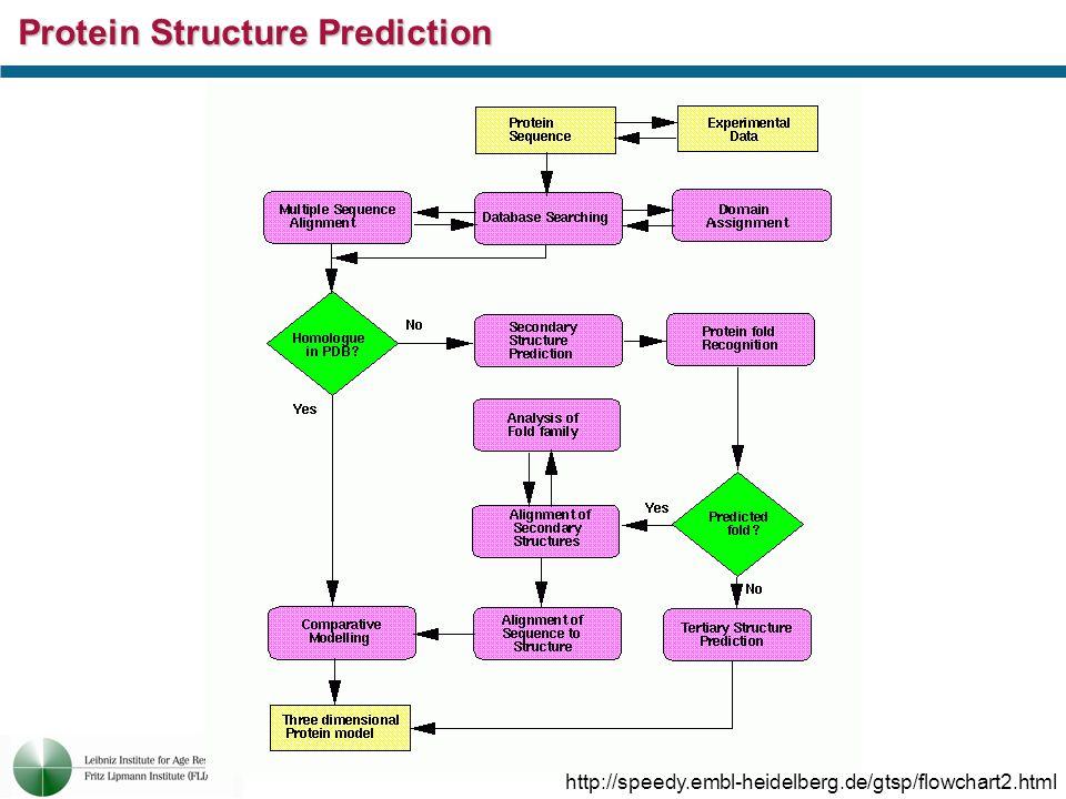Protein Structure Prediction http://speedy.embl-heidelberg.de/gtsp/flowchart2.html