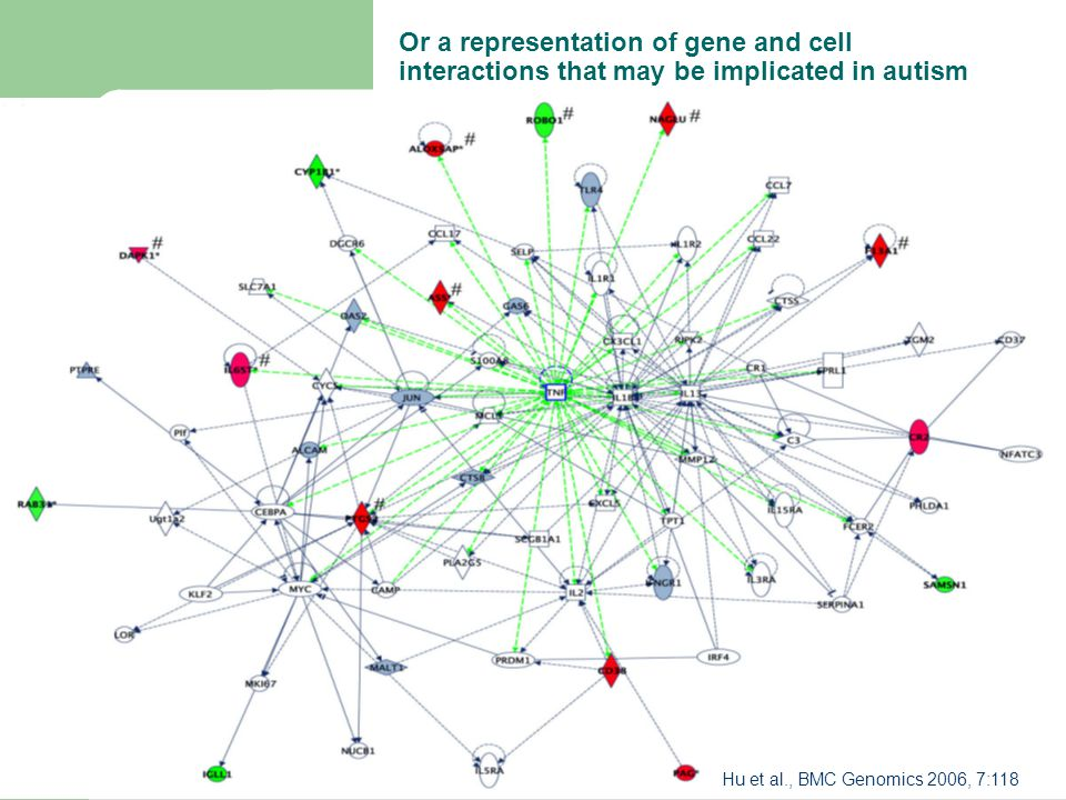 Or a representation of gene and cell interactions that may be implicated in autism Hu et al., BMC Genomics 2006, 7:118