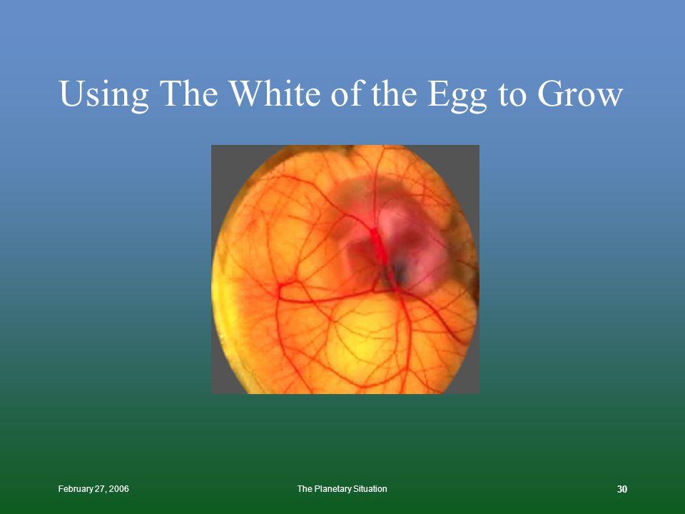February 27, 2006The Planetary Situation 29 Or Like An Embryo