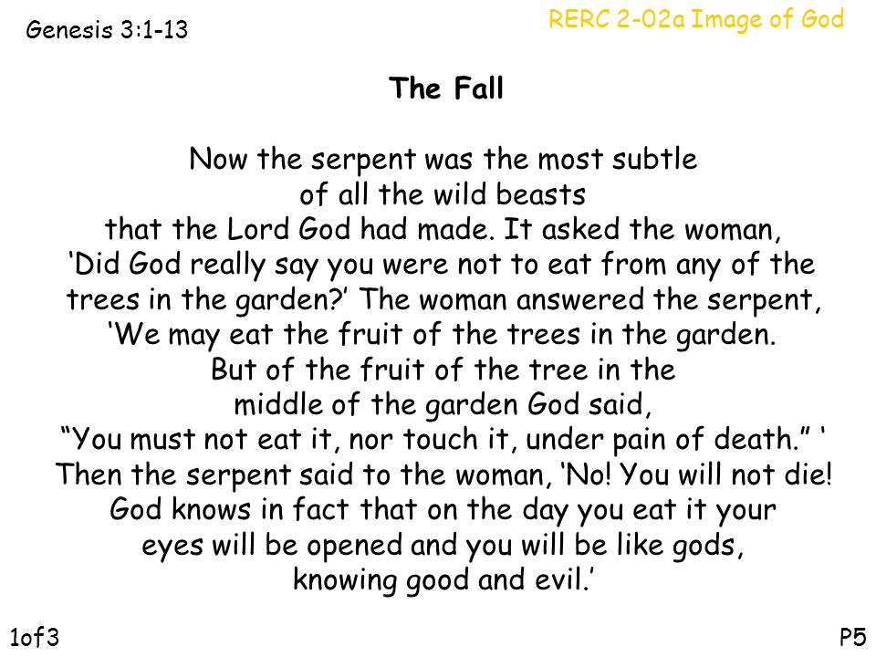RERC 2-02a Image of God Genesis 3:1-13 P5 The Fall Now the serpent was the most subtle of all the wild beasts that the Lord God had made. It asked the