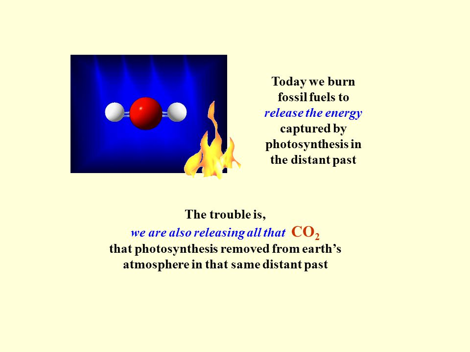 Today we burn fossil fuels to release the energy captured by photosynthesis in the distant past The trouble is, we are also releasing all that CO 2 that photosynthesis removed from earth's atmosphere in that same distant past