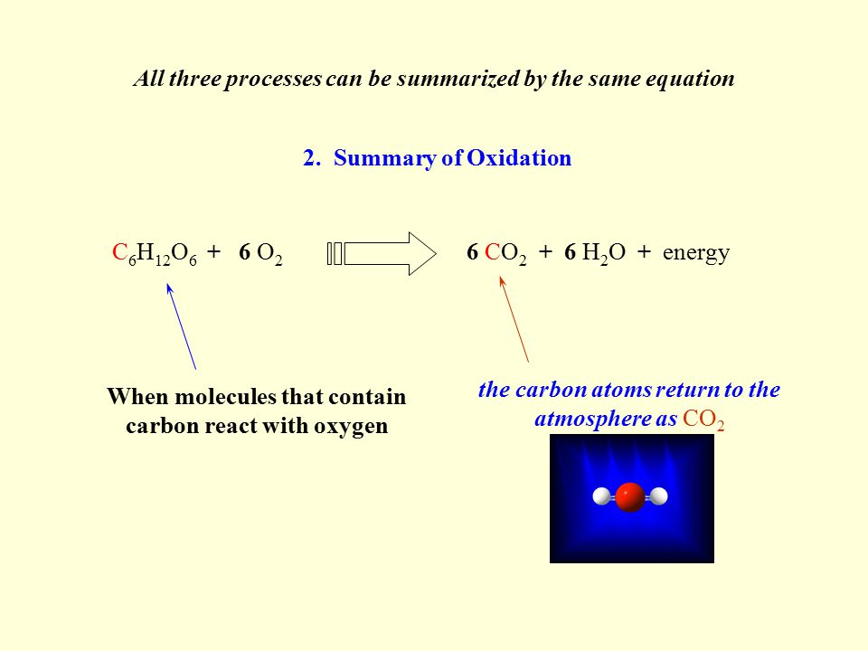 6 CO 2 + 6 H 2 O + energyC 6 H 12 O 6 + 6 O 2 But it also releases tons of CO 2 to the atmosphere When we burn wood or fossil fuels … combustion … the carbon atoms in their molecules are oxidized rapidly All three processes can be summarized by the same equation This releases a lot of energy that we can use 3.