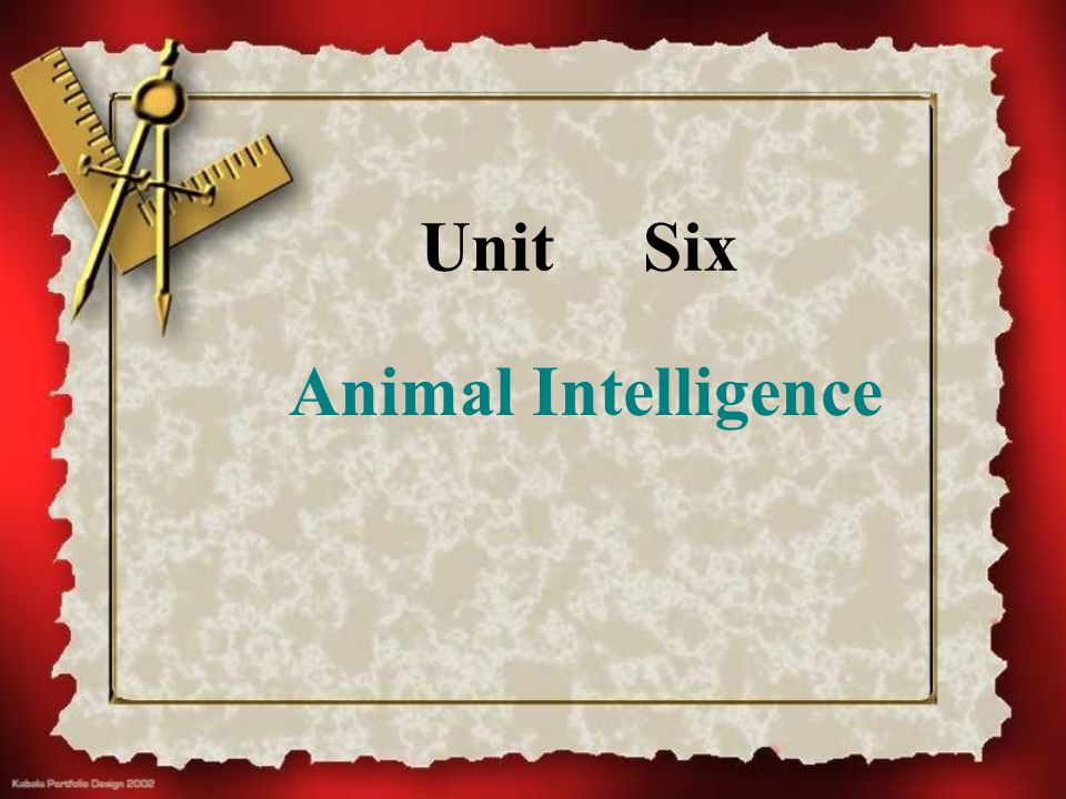 Unit Six Animal Intelligence