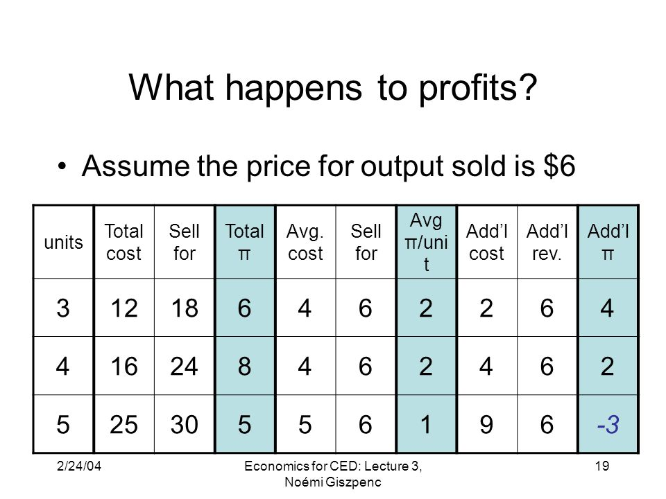 2/24/04Economics for CED: Lecture 3, Noémi Giszpenc 19 What happens to profits.