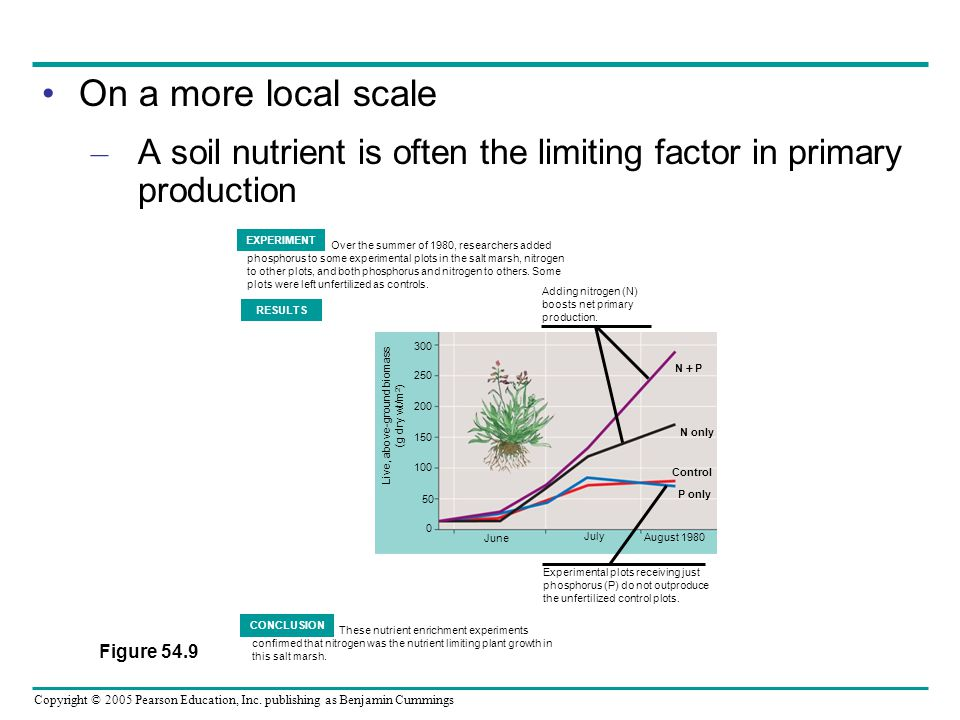 Copyright © 2005 Pearson Education, Inc. publishing as Benjamin Cummings On a more local scale – A soil nutrient is often the limiting factor in prima
