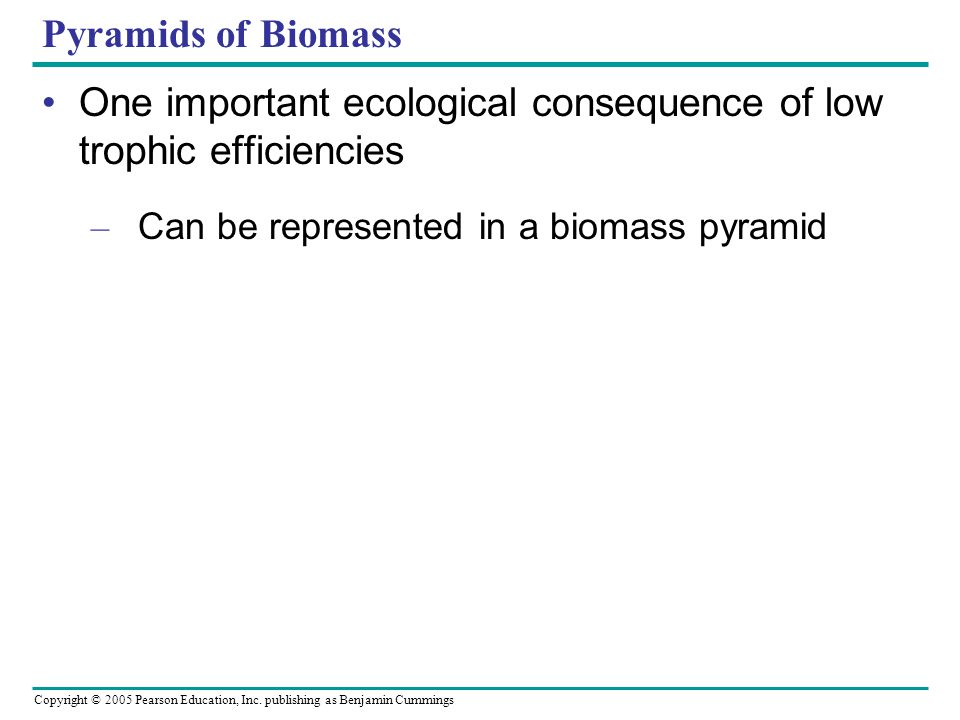 Copyright © 2005 Pearson Education, Inc. publishing as Benjamin Cummings Pyramids of Biomass One important ecological consequence of low trophic effic