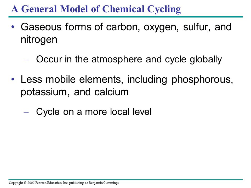 Copyright © 2005 Pearson Education, Inc. publishing as Benjamin Cummings A General Model of Chemical Cycling Gaseous forms of carbon, oxygen, sulfur,