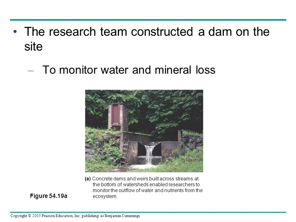 Copyright © 2005 Pearson Education, Inc. publishing as Benjamin Cummings The research team constructed a dam on the site – To monitor water and minera