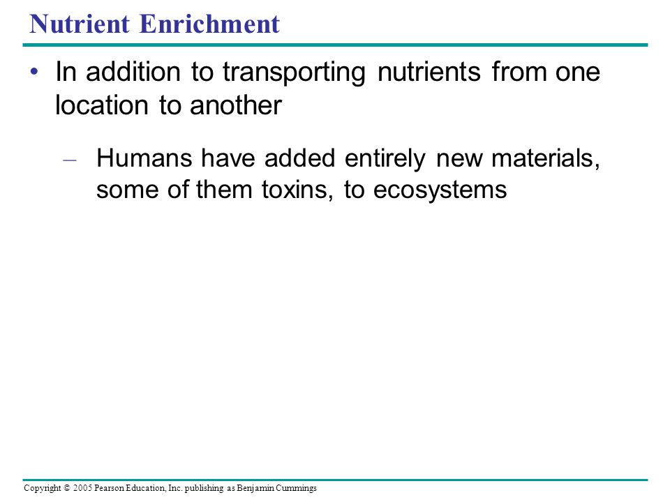 Copyright © 2005 Pearson Education, Inc. publishing as Benjamin Cummings Nutrient Enrichment In addition to transporting nutrients from one location t