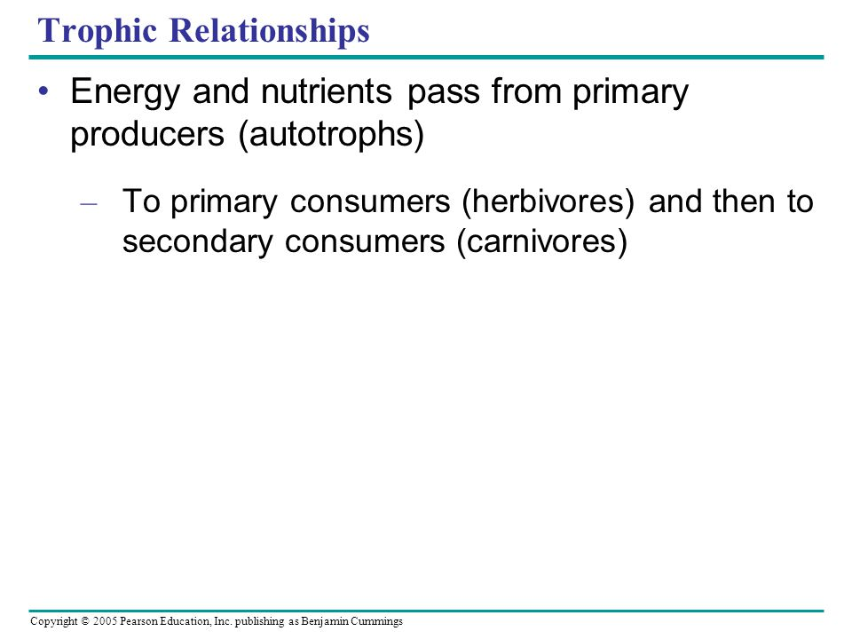 Copyright © 2005 Pearson Education, Inc. publishing as Benjamin Cummings Trophic Relationships Energy and nutrients pass from primary producers (autot