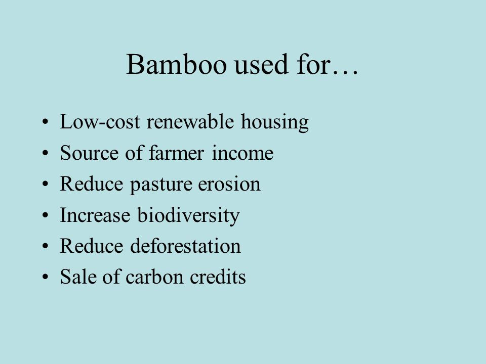 Bamboo used for… Low-cost renewable housing Source of farmer income Reduce pasture erosion Increase biodiversity Reduce deforestation Sale of carbon credits