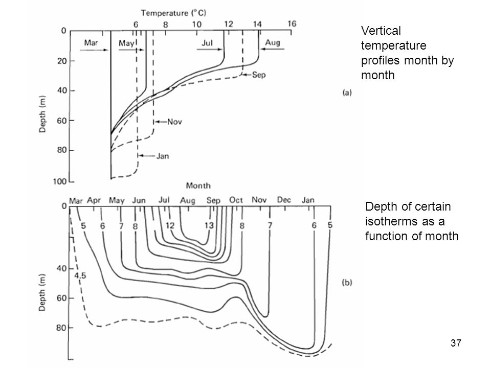 Depth of certain isotherms as a function of month Vertical temperature profiles month by month 37