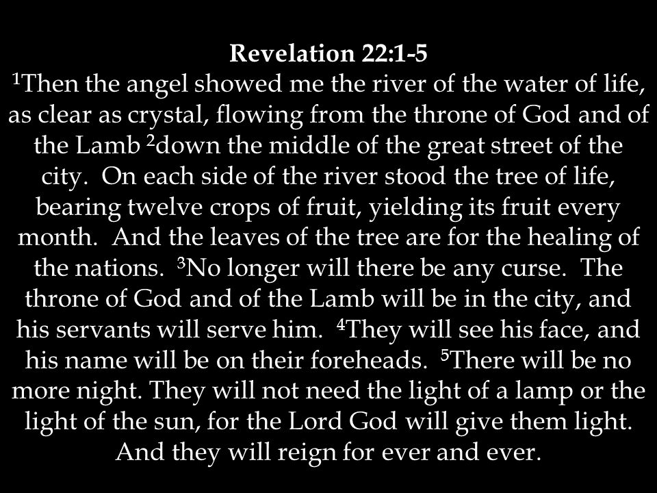 Revelation 22:1-5 1 Then the angel showed me the river of the water of life, as clear as crystal, flowing from the throne of God and of the Lamb 2 down the middle of the great street of the city.