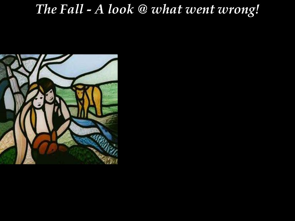 The Fall - A look @ what went wrong!