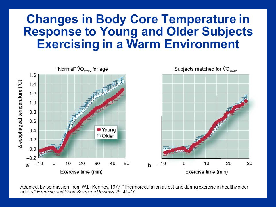 Changes in Body Core Temperature in Response to Young and Older Subjects Exercising in a Warm Environment Adapted, by permission, from W.L.