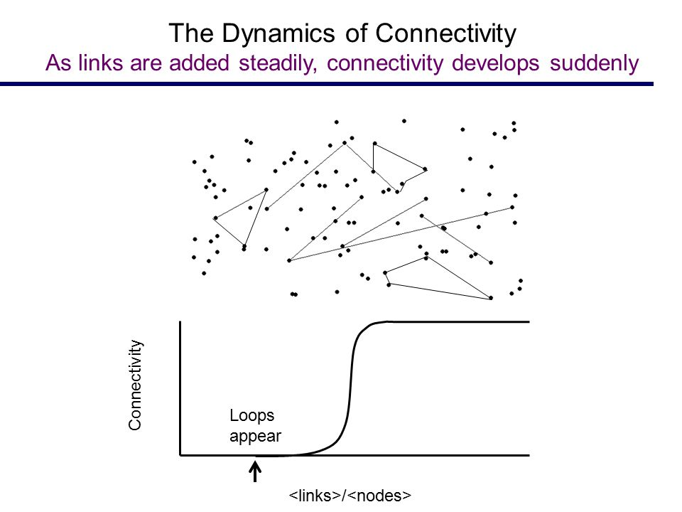Loops appear Connectivity / The Dynamics of Connectivity As links are added steadily, connectivity develops suddenly