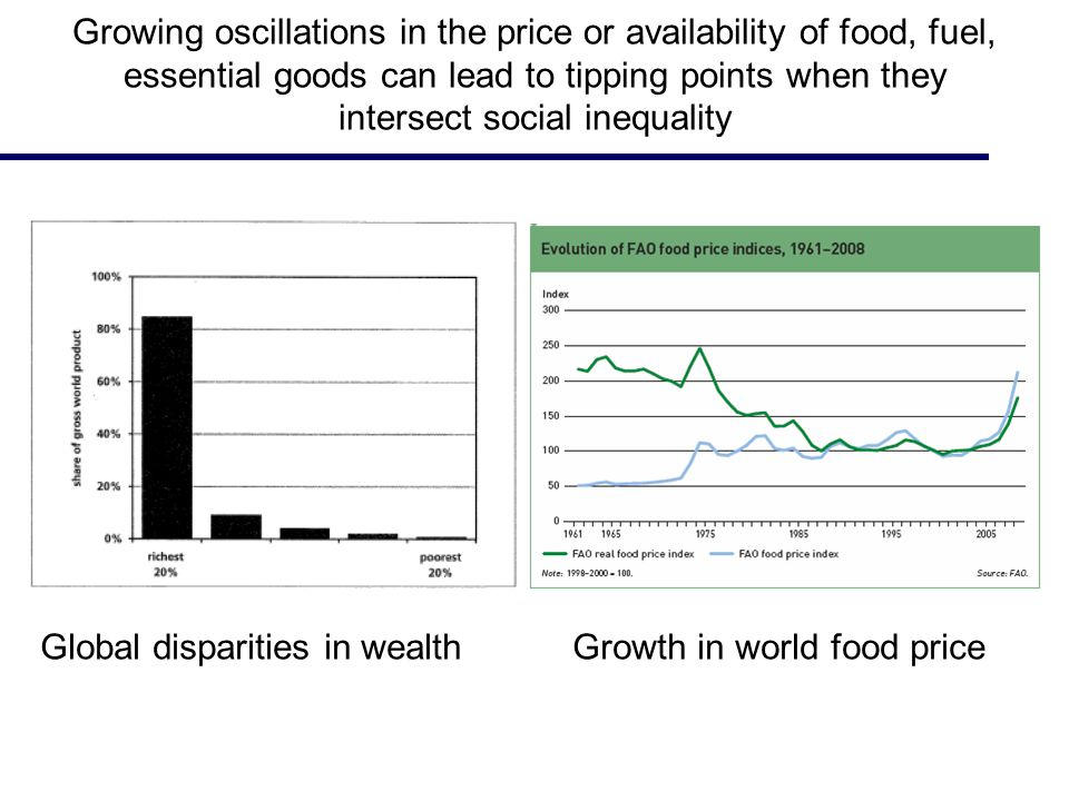 Growing oscillations in the price or availability of food, fuel, essential goods can lead to tipping points when they intersect social inequality Global disparities in wealth Growth in world food price