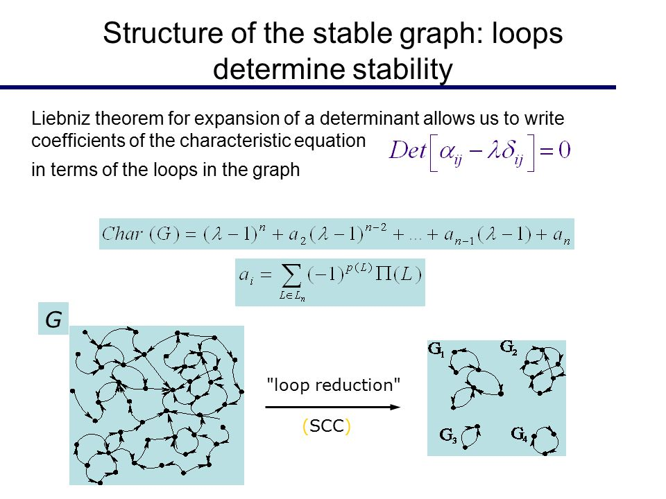 Structure of the stable graph: loops determine stability G