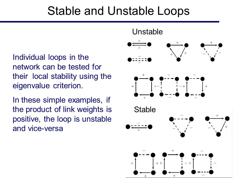 Stable and Unstable Loops Unstable Stable Individual loops in the network can be tested for their local stability using the eigenvalue criterion. In t