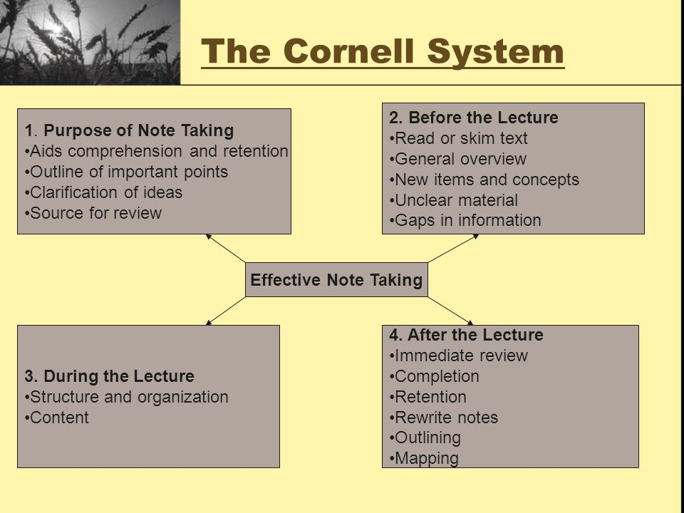 6 Steps of the Cornell System Explained 3.