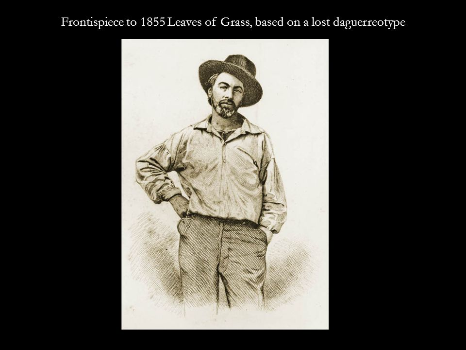 Its author is Walt Whitman and his book is a reproduction of the author.