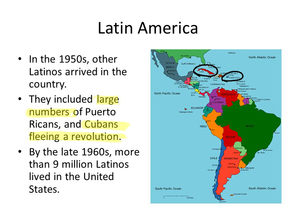 Latin America In the 1950s, other Latinos arrived in the country. They included large numbers of Puerto Ricans, and Cubans fleeing a revolution. By th