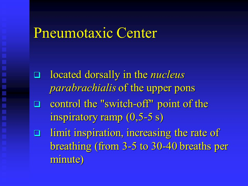 Pneumotaxic Center  located dorsally in the nucleus parabrachialis of the upper pons  control the switch-off point of the inspiratory ramp (0,5-5 s)  limit inspiration, increasing the rate of breathing (from 3-5 to 30-40 breaths per minute)