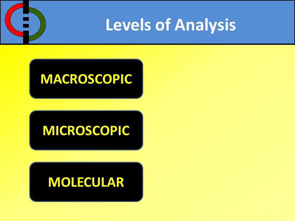 Levels of Analysis MACROSCOPIC MICROSCOPIC MOLECULAR