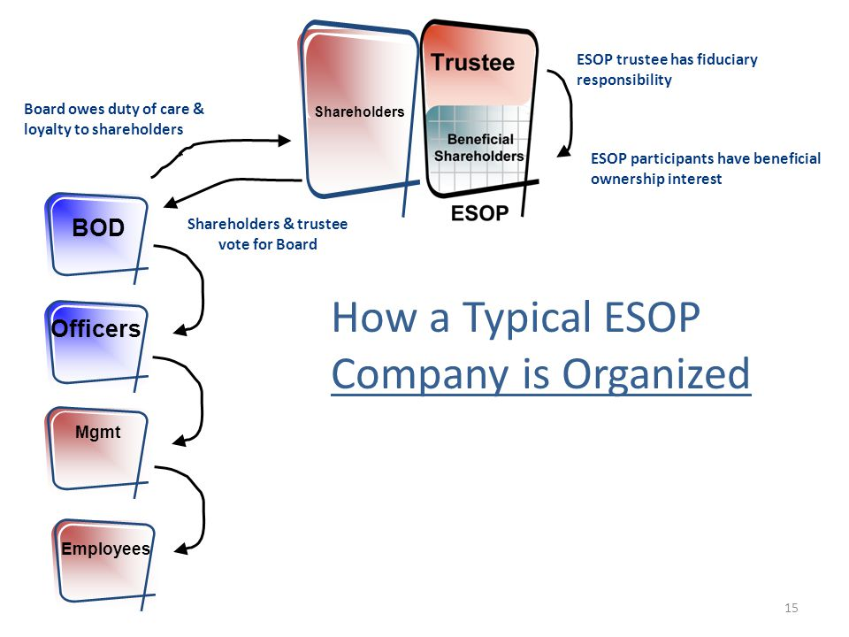 Shareholders How a Typical ESOP Company is Organized BOD Officers Mgmt Employees Board owes duty of care & loyalty to shareholders ESOP participants have beneficial ownership interest ESOP trustee has fiduciary responsibility Shareholders & trustee vote for Board 15