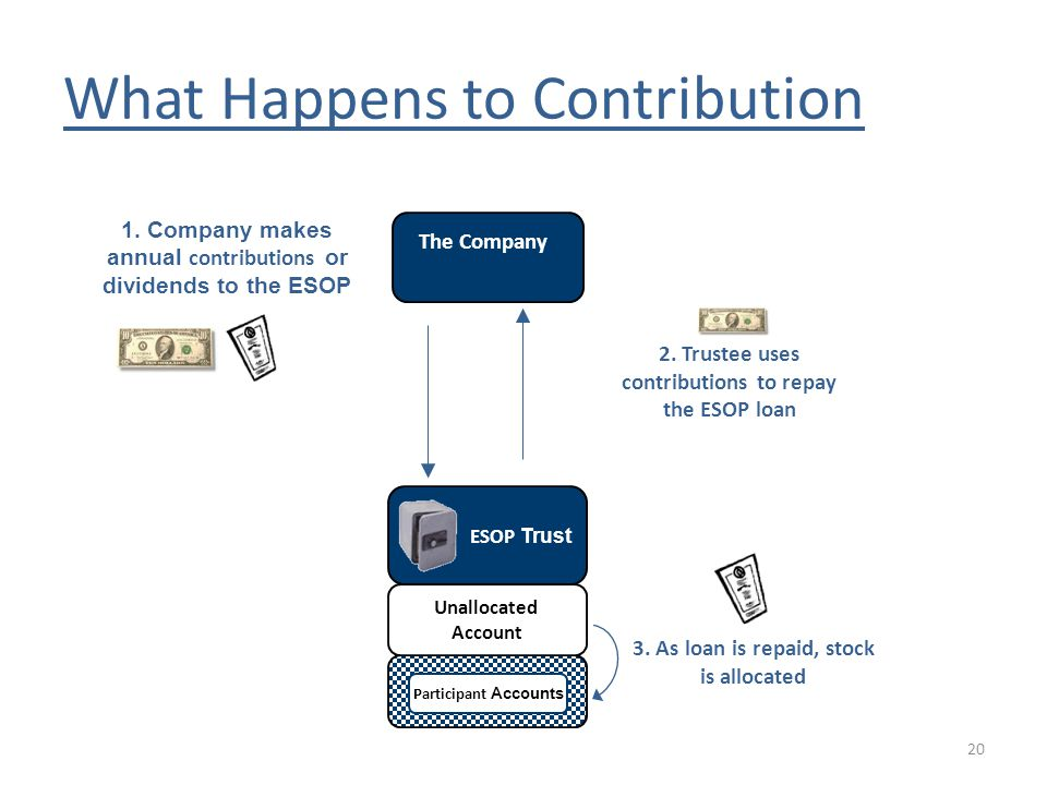 What Happens to Contribution 1. Company makes annual contributions or dividends to the ESOP 2.